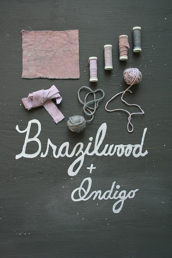 brazilwoodindigo_dyestudy_web.jpg