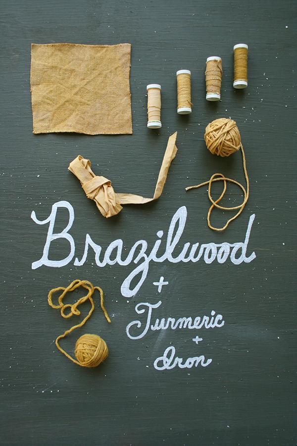 brazilwoodturmericiron_dyestudy_web.jpg