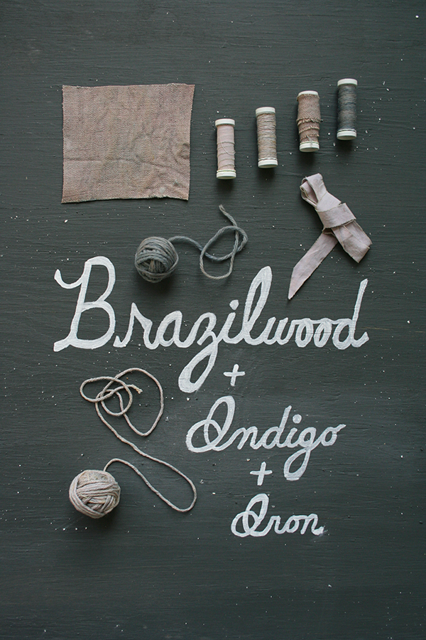 brazilwoodindigoiron_dyestudy_web.jpg