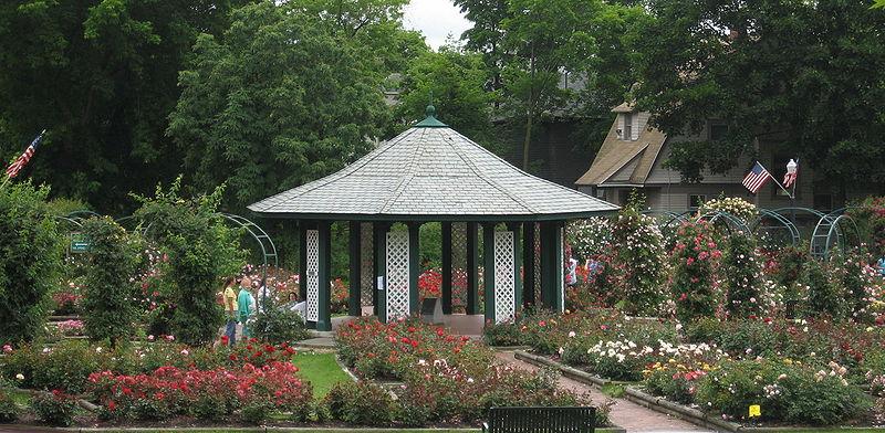 800pxmills_rose_garden-1.jpg