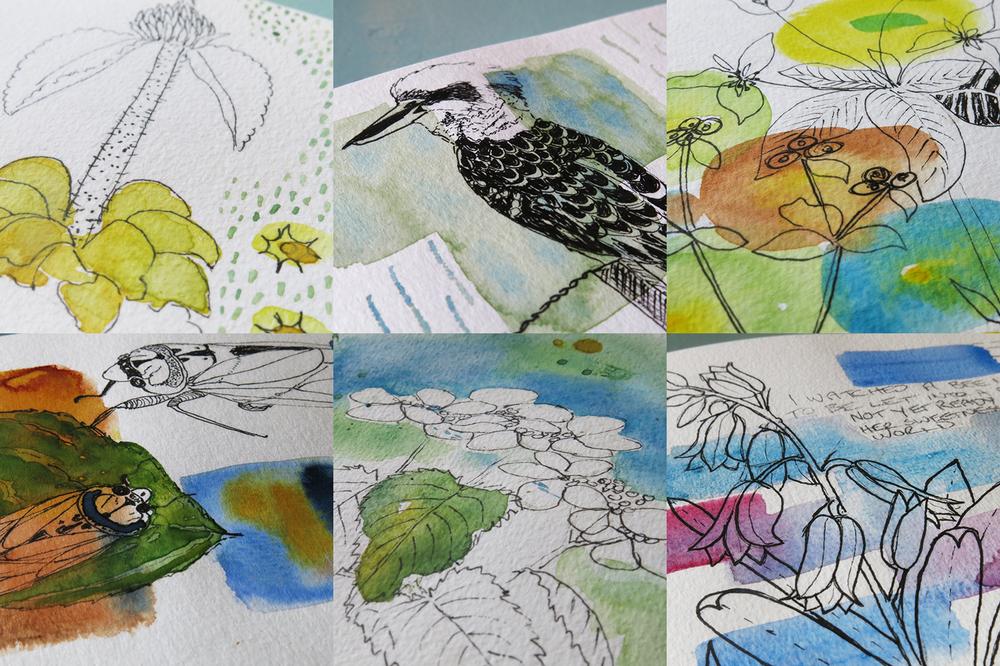 Kookaburra, water colour sketching, art journal  - Galia Alena