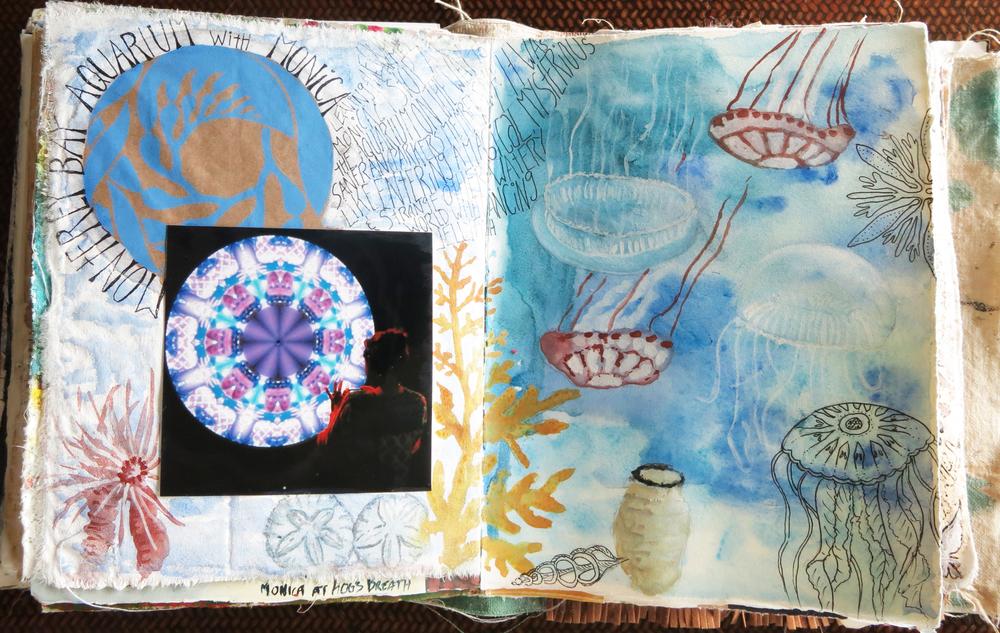 Monterey Aquarium travel journal - Galia Alena