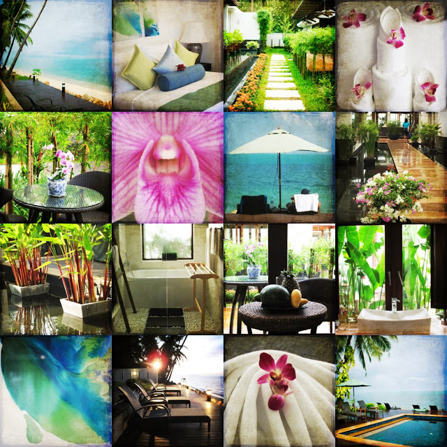 Thailand, Koh Samui, Lotus Terrace, Galia Alena Photography