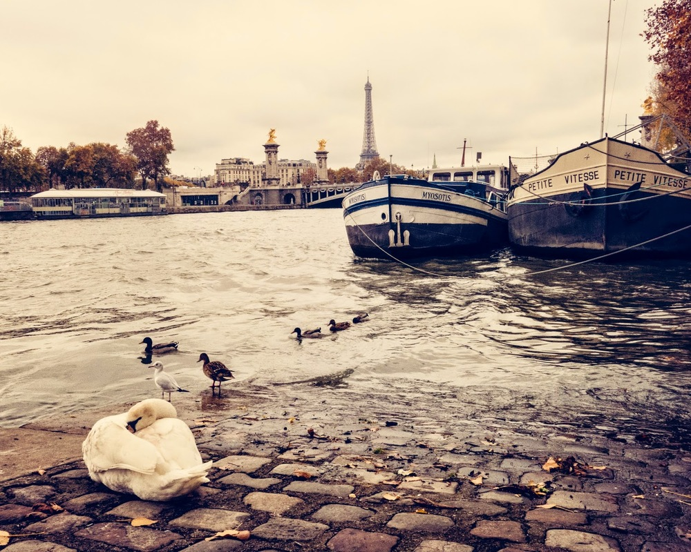 Galia Alena Travel Photography Paris