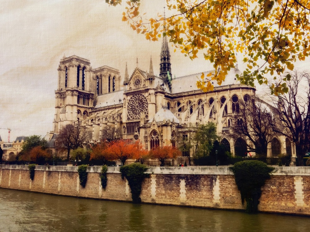 Galia Alena Travel Photography Paris Notre Dame