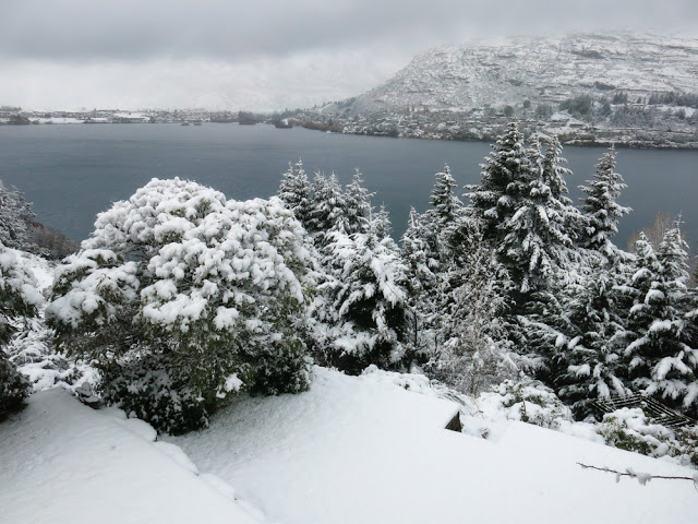 Galia Alena Queenstown Snow