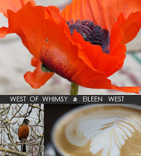 Eileen West Camera Craft Contributors- online photography workshop