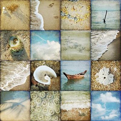 galia alena photography