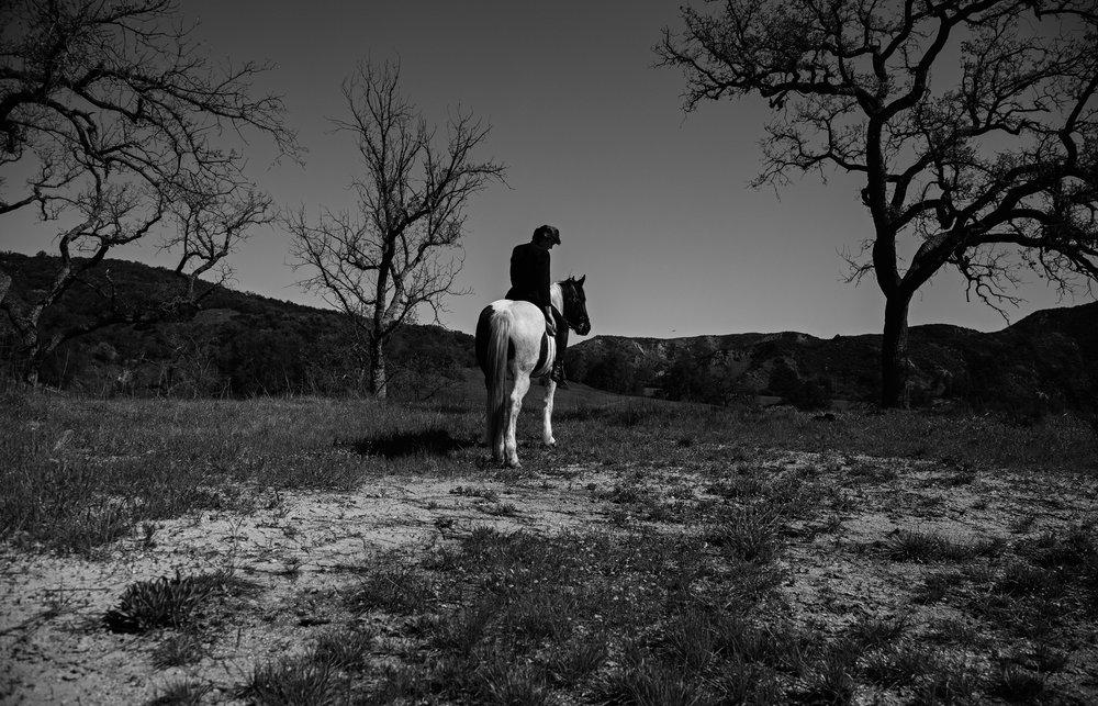 Kat-kaye-sam-evans-Lofficiel-paris-italia-2017-2018-horse.jpg
