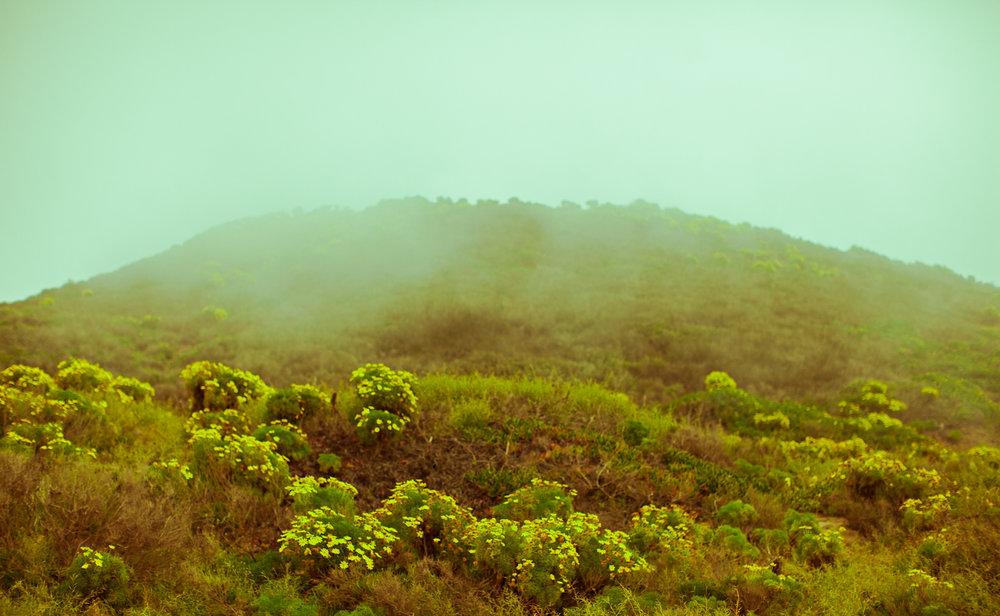 kat-kaye-Landscape-photography-beach-fog.jpg