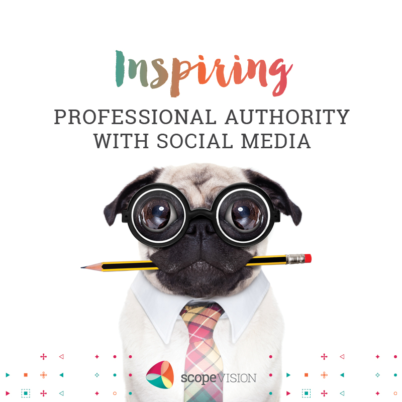 Inspiring Professional Authority With Social Media
