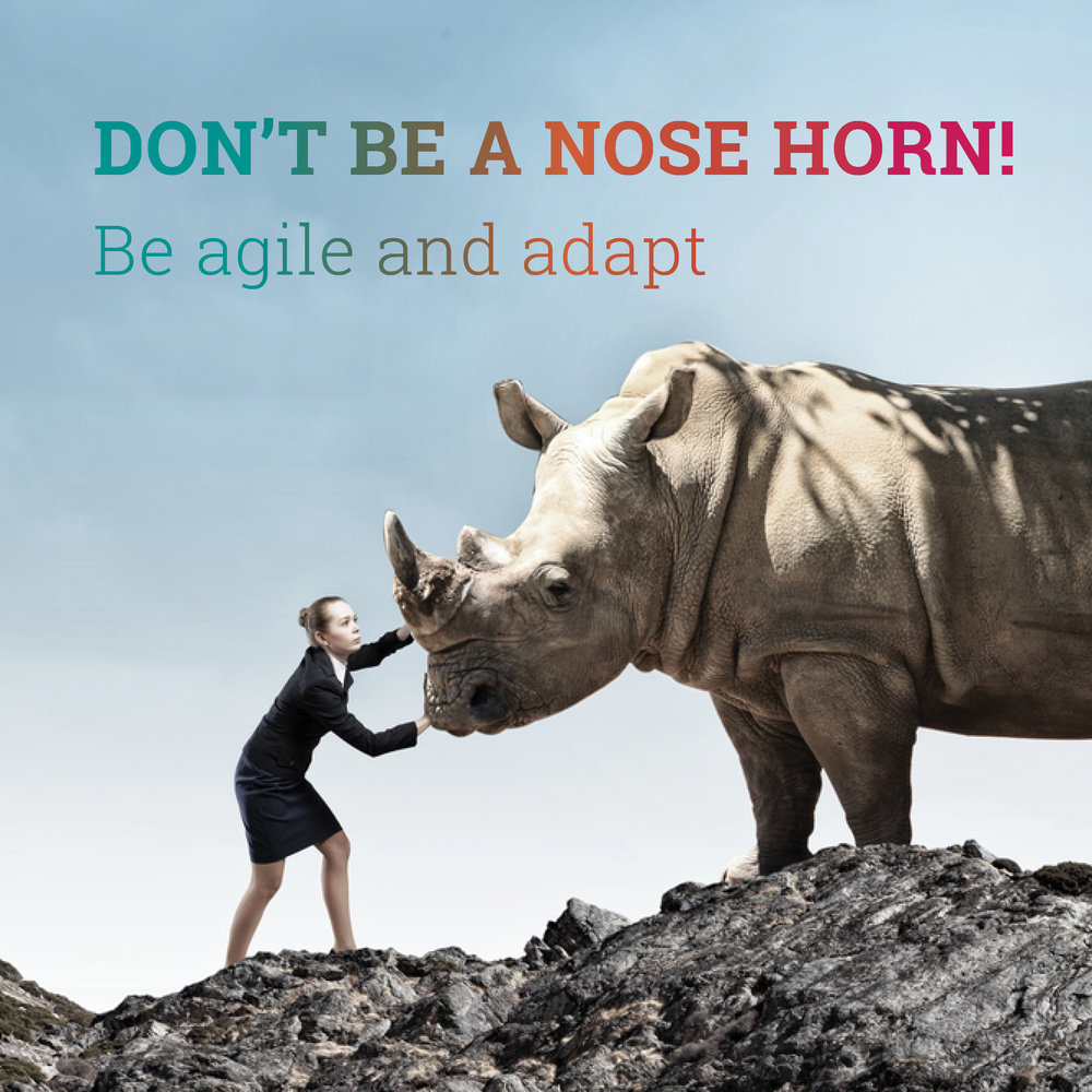 Don't be a nose horn!