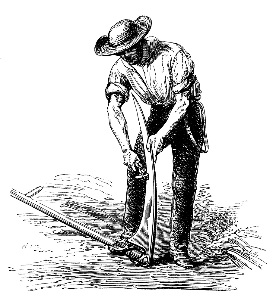 Antique-illustration-of-farmer-488214064_4912x5306SMALL.jpg