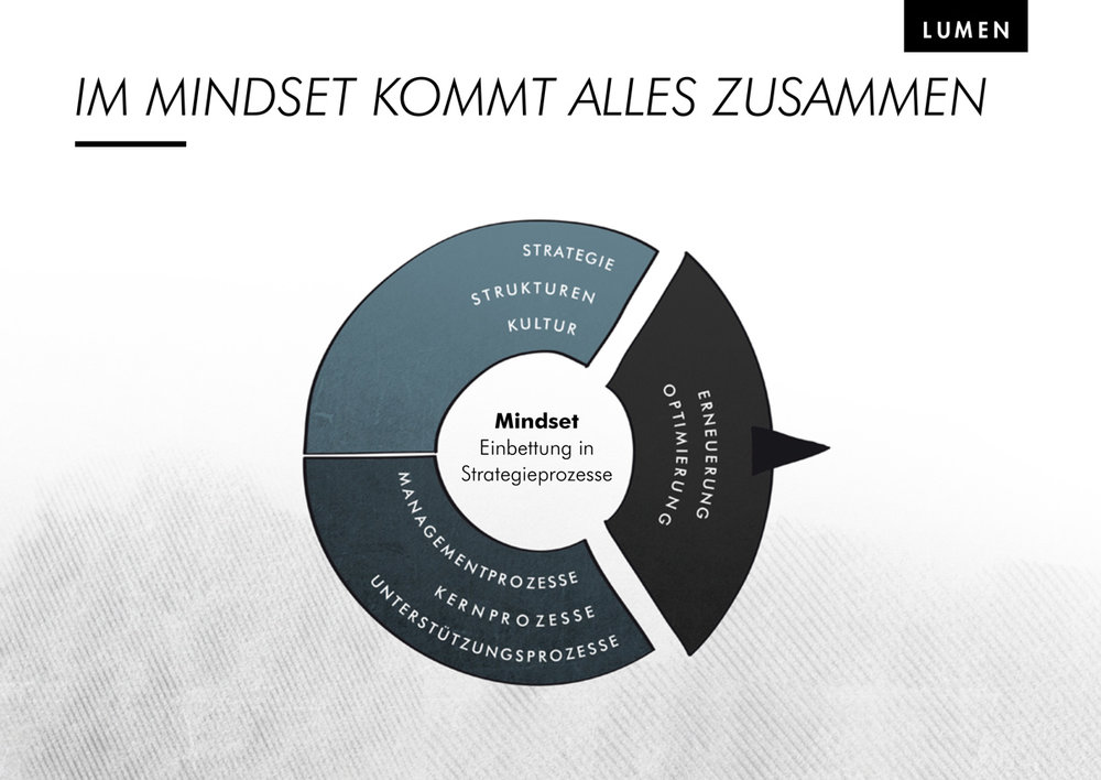 Lumen_Corporate_Mindset_St_gallen_mangement_Modell.jpg