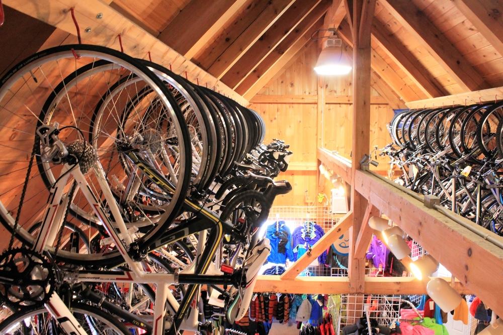 bikes02.jpg