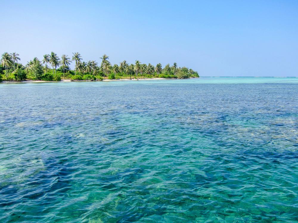 Reef off Menjangan Kecil