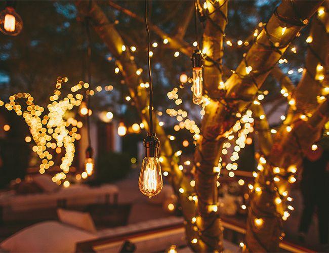 tree lighting ideas. Outdoor Lights For Trees Light Images Ideas Lighting Junique Audiocablefo Shop Tree