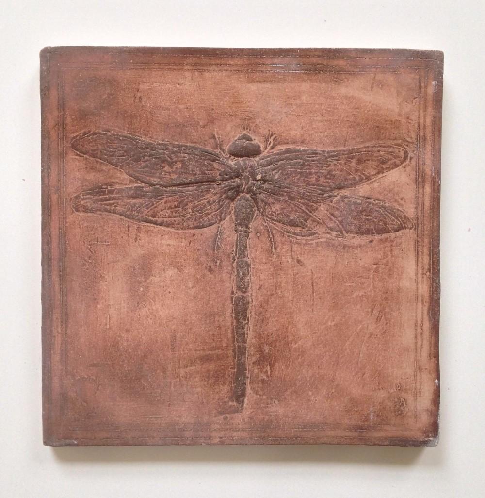 forma550 dragonfly.jpg