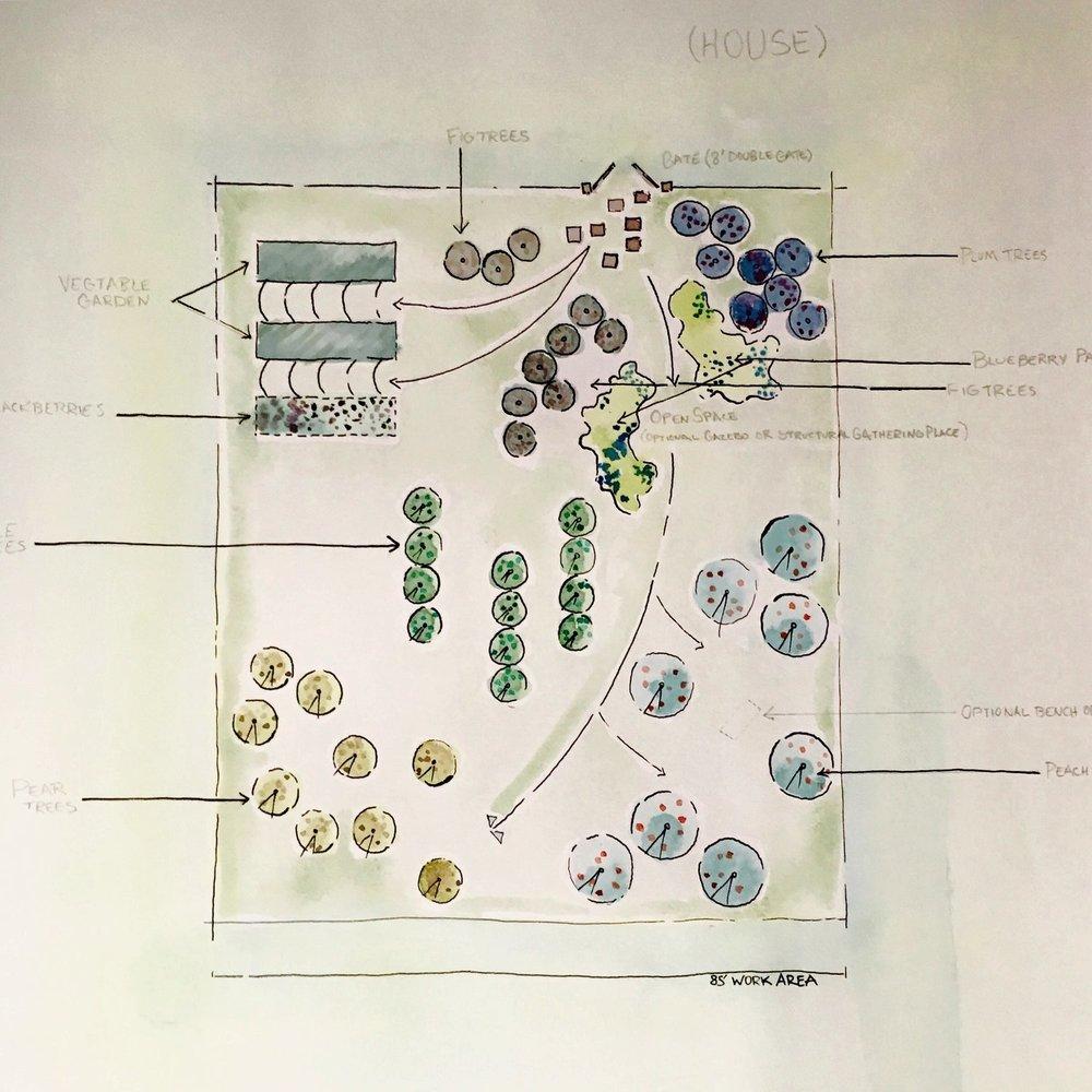 Landscape Architecture Specifications