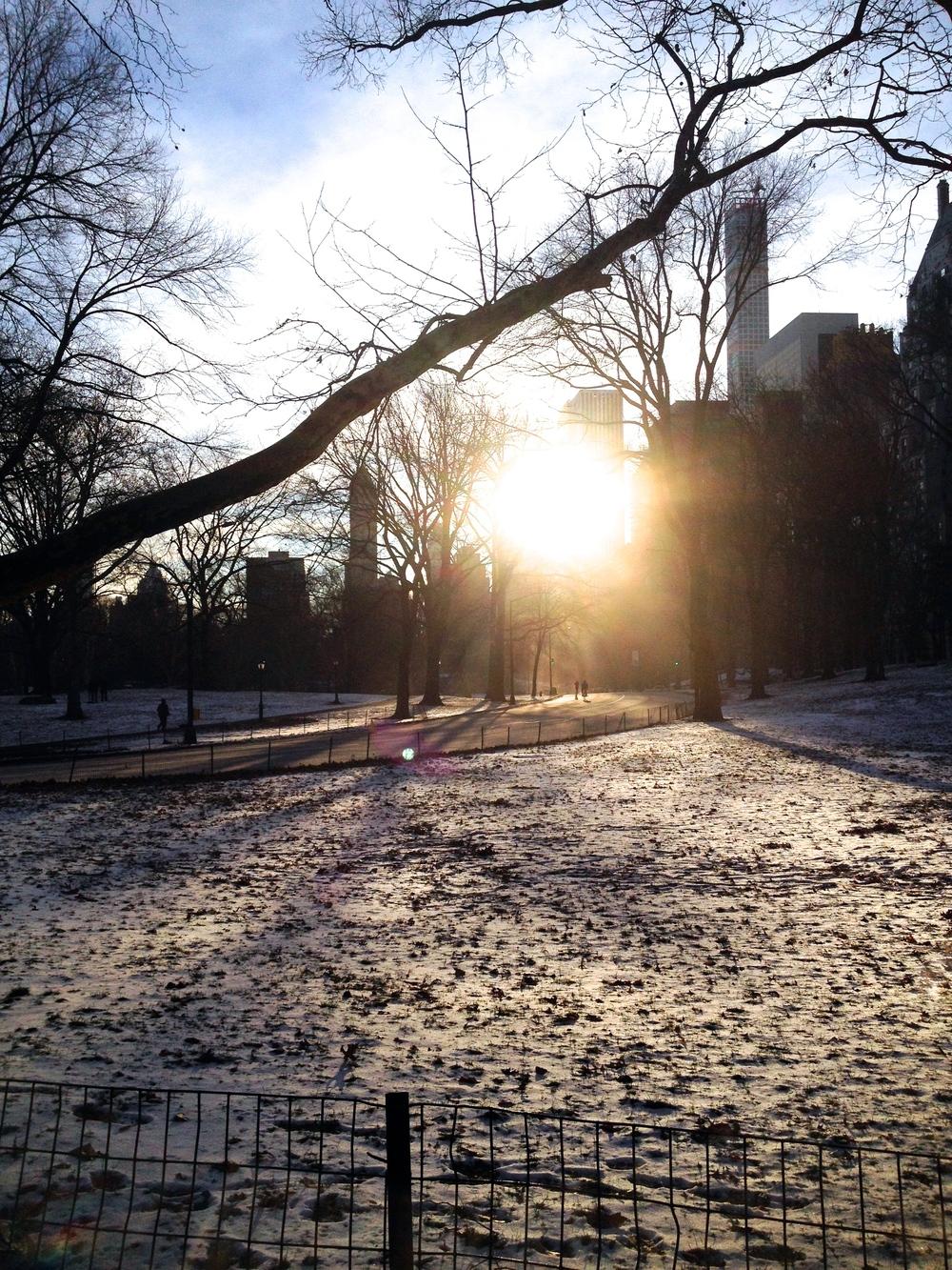 Wintery wonderland in Central Park