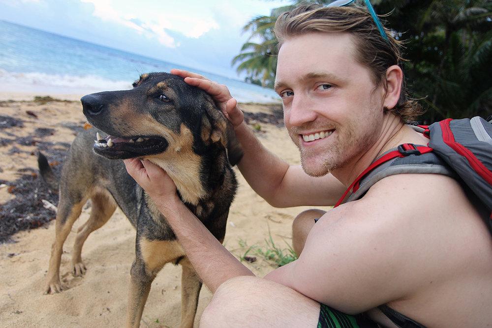 Beach Dog!