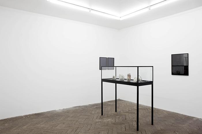 Installation view,  Monde Sauvage , Galerie Jeanrochdard