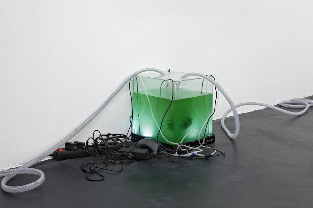 Daniel Keller, Onanet Spirulina 1, 2015