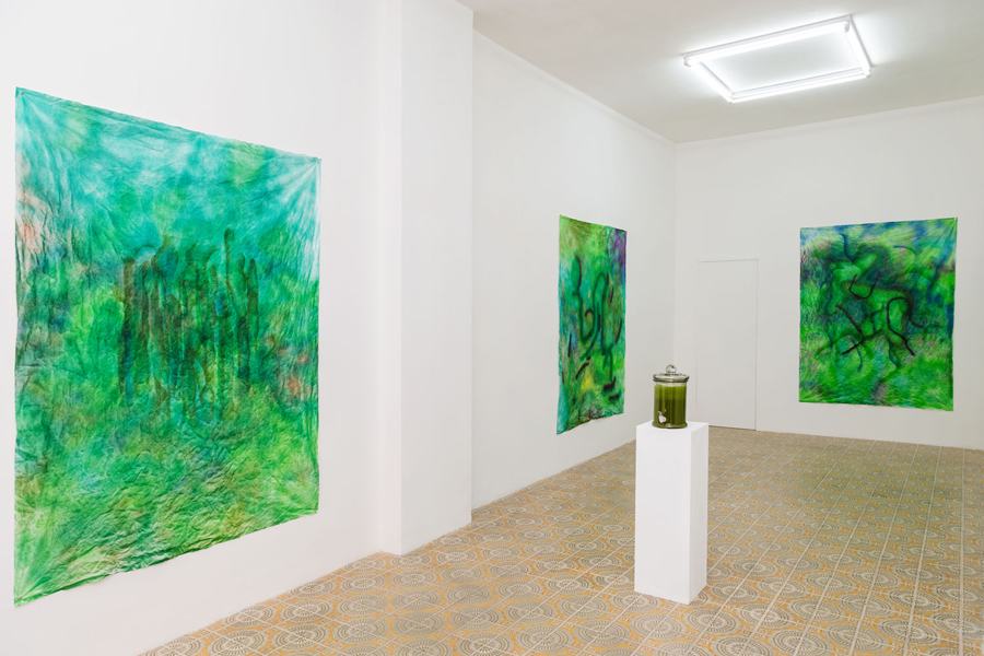 Installation view, SUPERFOOD, Acappella