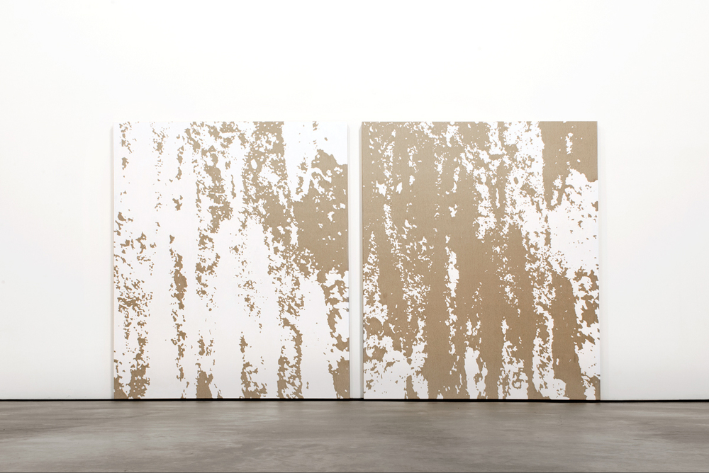 Installation view,1/81,Coa Museum, Pedro Matos
