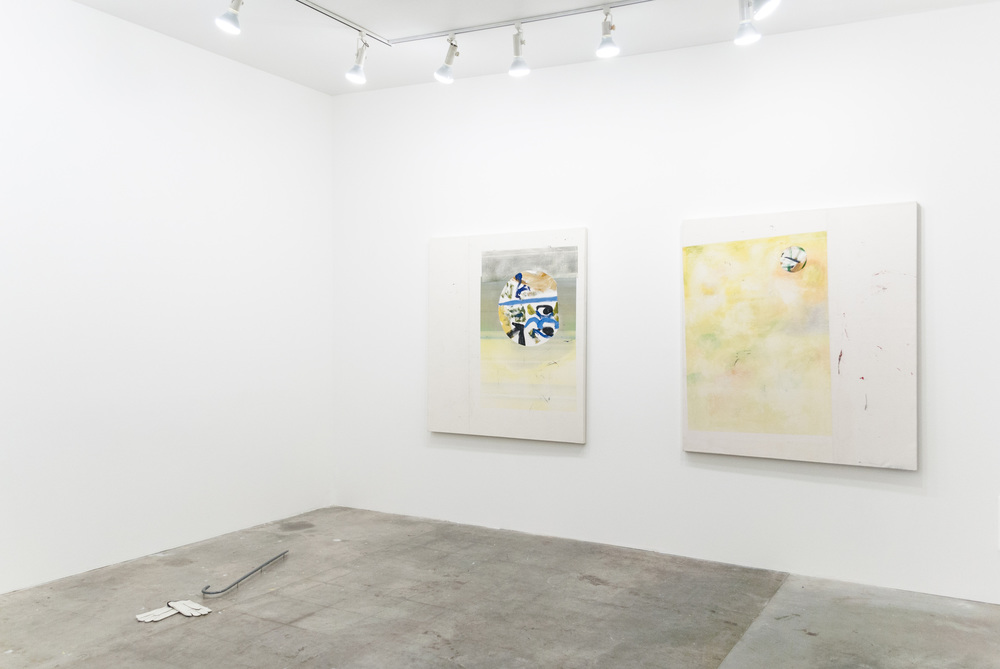 Installation view,  Gray Minstrel , Carl & Sloan Contemporary