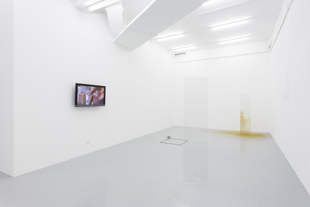 Installation view,Beauty Codes (Order/Disorder/Chaos) Act II, Kunsthalle Lisbon