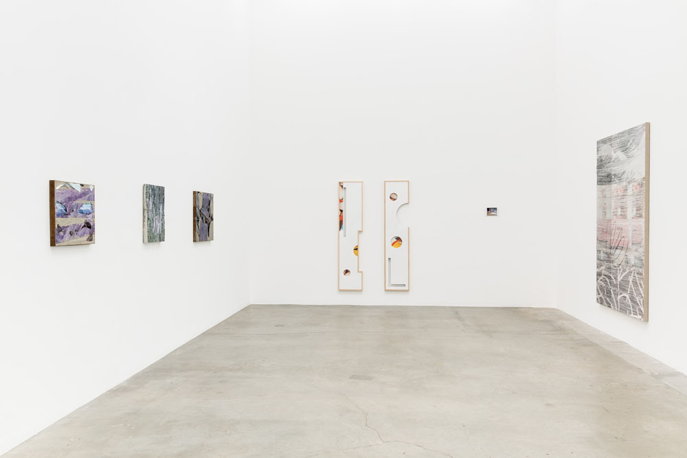 Installation view, Catfish, Anat Ebgi Gallery