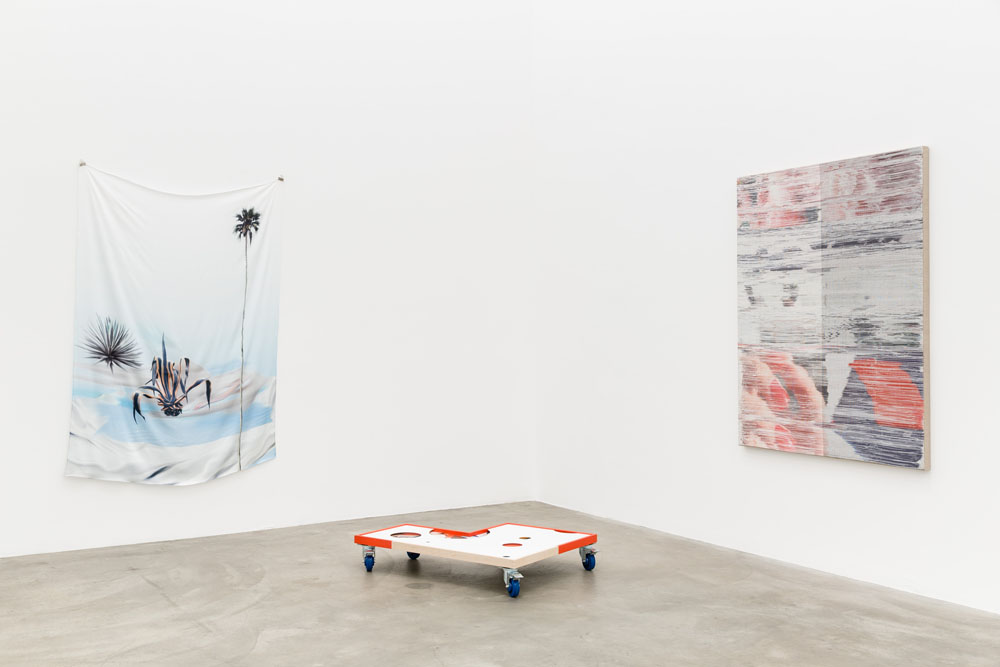 Installation view, Catfish , Anat Ebgi Gallery