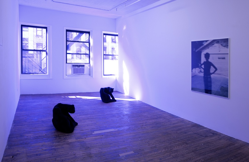 Installation view,  Vertical Elevated Oblique , Bridget Donahue