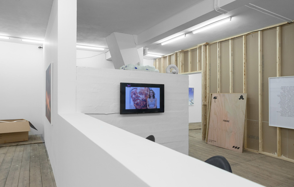 Installation view, Jonas Lund, Jonas Lund's Contemporary Gallery, New Shelter Plan