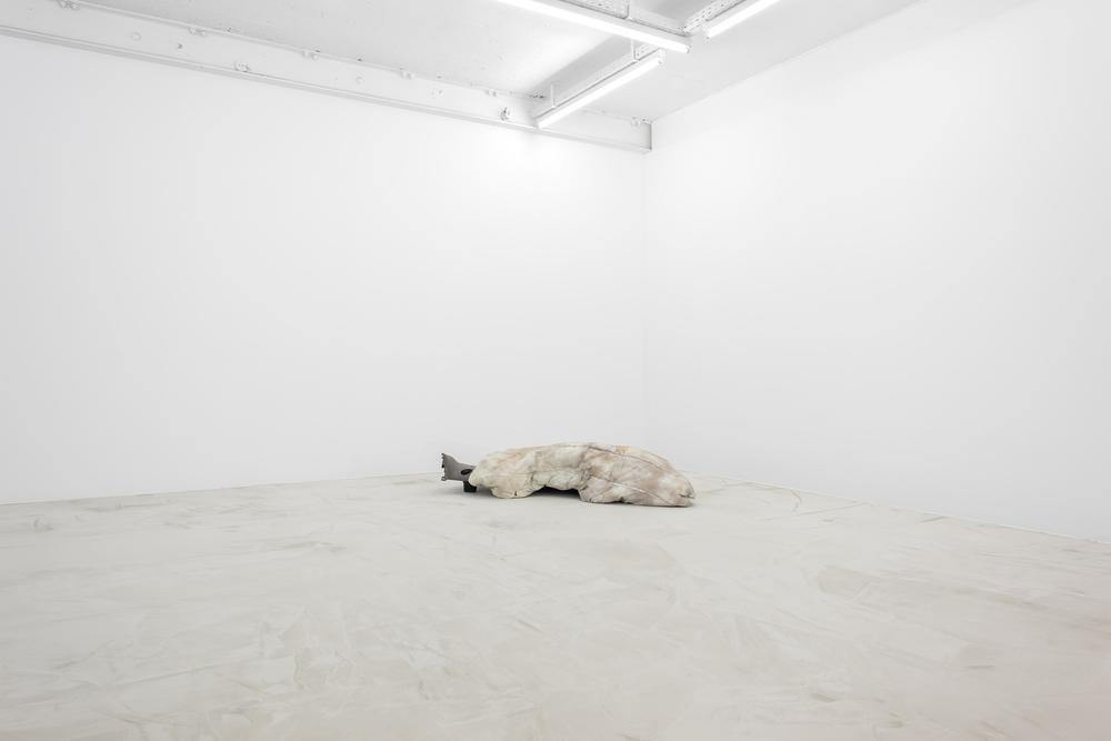 Installation view, Steffen Bunte, Shell; Fiction (Trailer) , Galerie Jeanroch Dard