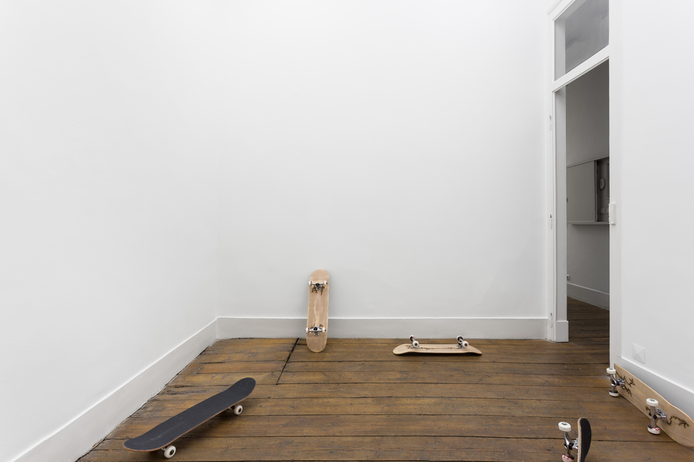 Installation view, Nuno da Luz,  Wilderness , Vera Cortês Art Agency