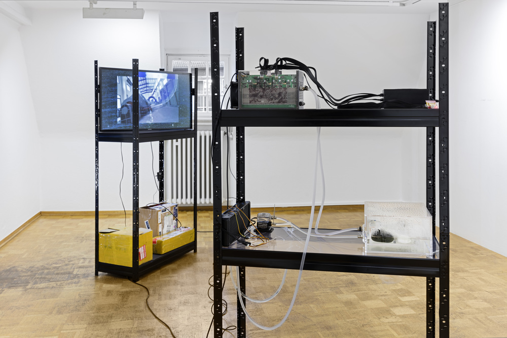 Yuri Pattison,  the ideal (v. 0.2) , 2015,   Bielefelder Kunstverein.