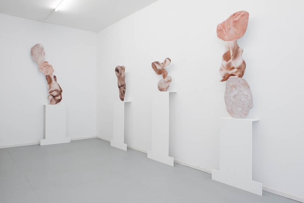 Installation view, Rachel de Joode, Connective Tissue, CINNAMON