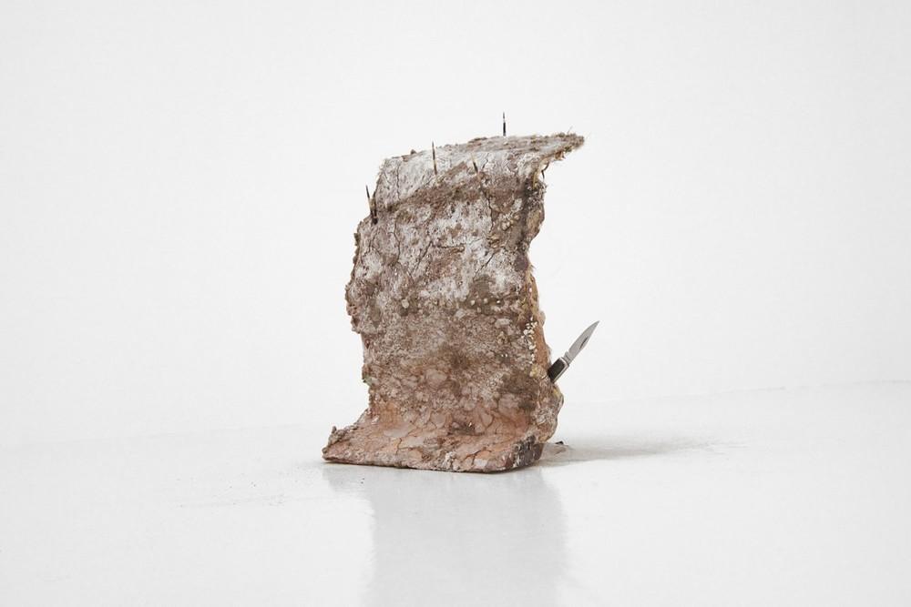 Michele Gabriele,Shitty-Slippy-Slutty (dry version), 2015
