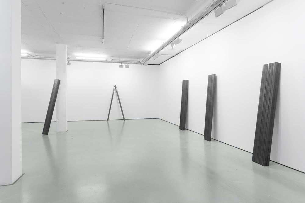 Installation view, Diogo Pimentão, Transitory Capture, Cristina Guerra Contemporary Art