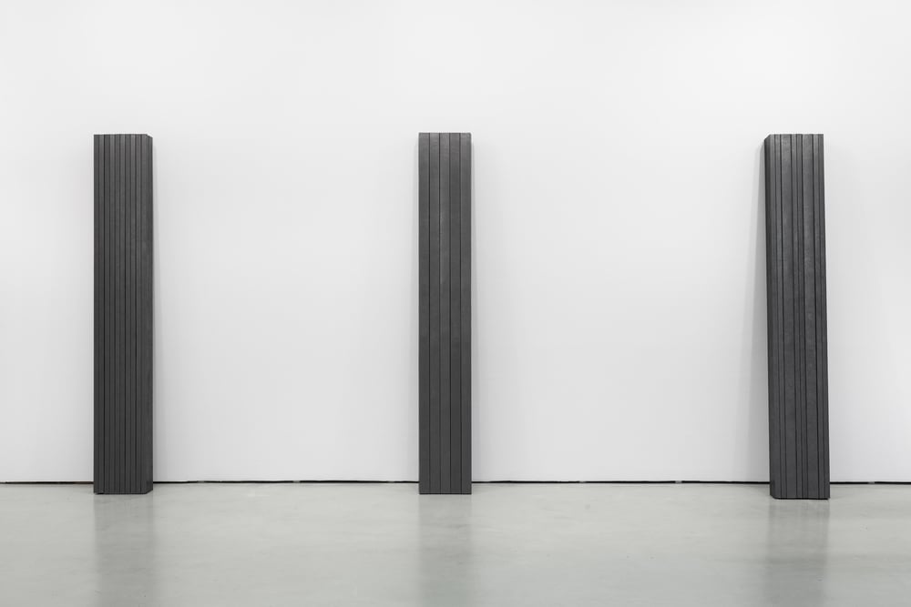 Installation view, Diogo Pimentão,Transitory Capture, Cristina Guerra Contemporary Art