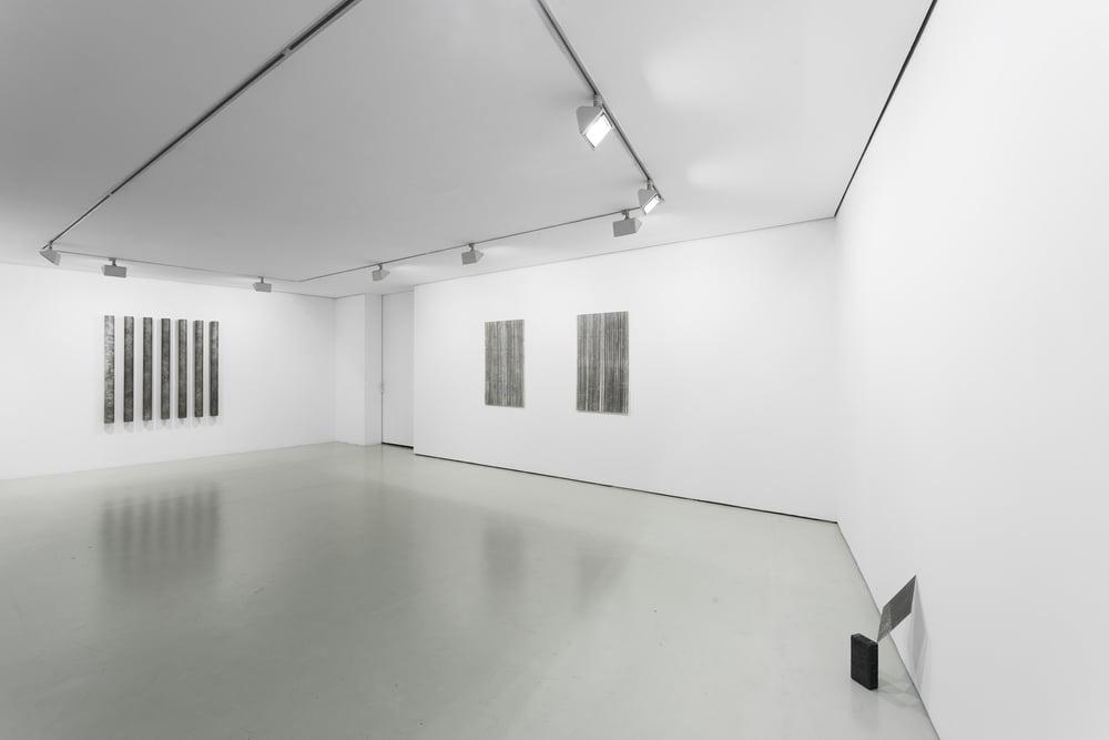 Installation view, Diogo Pimentão, Transitory Capture , Cristina Guerra Contemporary Art