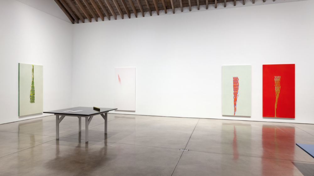 Installation view, Tauba Auerbach, Projective Instrument , Paula Cooper Gallery