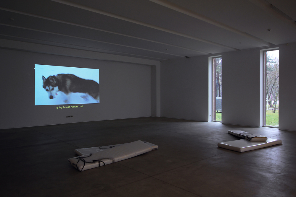 Installation view, Antoine Donzeaud,  A Thousand Friends , Rupert