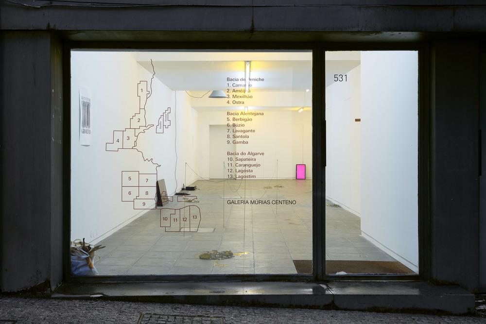 Installation view,  Rinoceronte-Ananás , Múrias Centeno