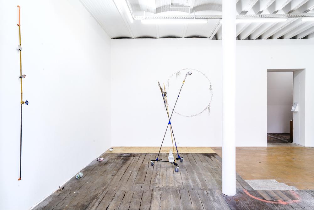 Installation view,Carson Fisk-Vittori,Disturbance Ecology, MonChéri
