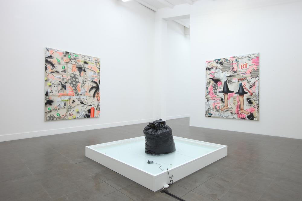 Installation view, Josh Reames, Wet & Wild , Brand New Gallery