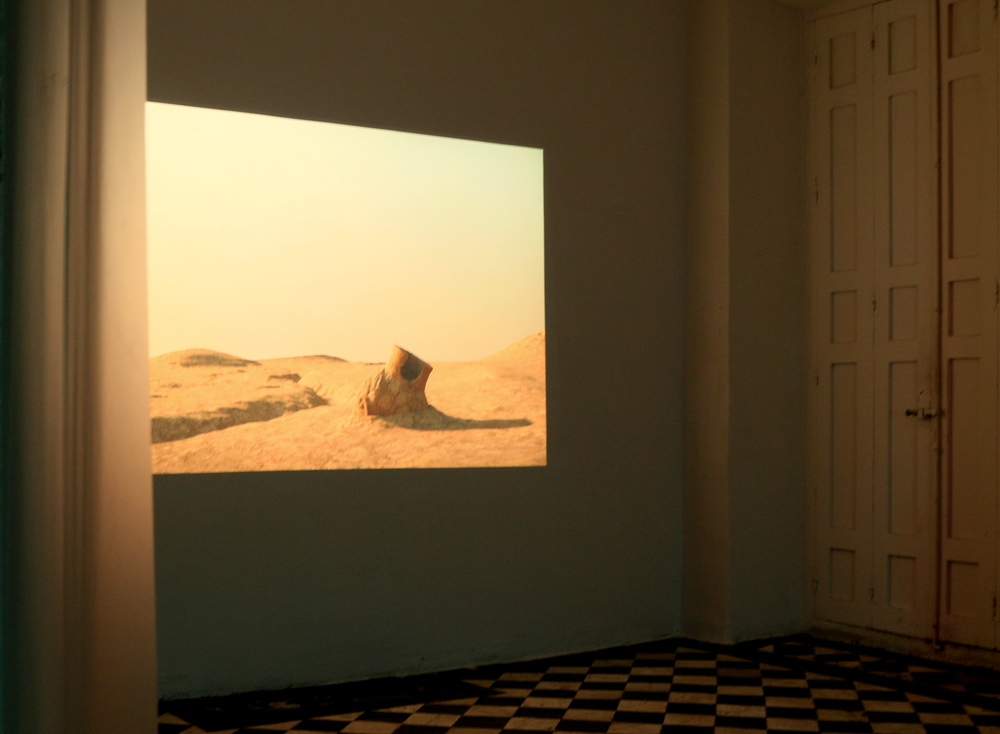 Installation view, Andrea Zucchini,  Born in a pot , Salón