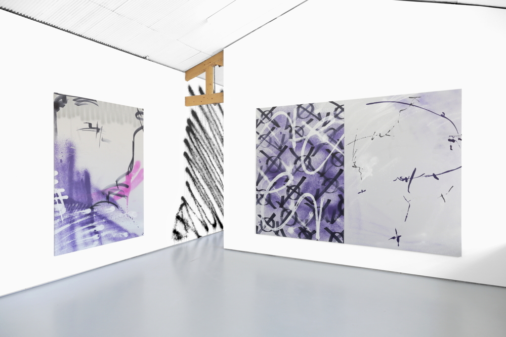 Installation view, Ziggy Grudzinskas,   Cognitive Dissonance  , Tristian Koenig